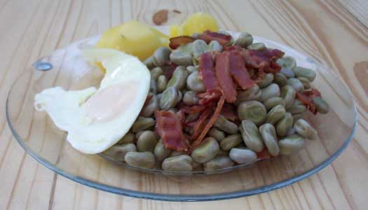 [a meal of fava beans with bacon, potatoes and a fried egg]